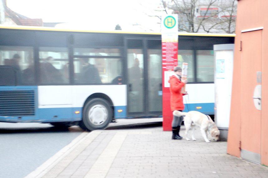 Busse Kantsteine