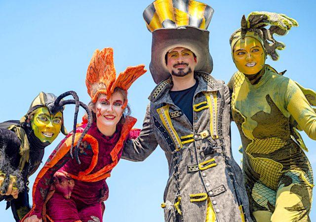 Carnival der Kulturen web