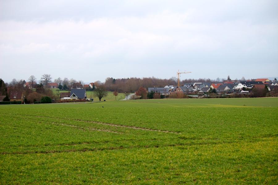Diese Fläche zwischen Schuckenbaum und Leopoldshöhe könnte bebaut werden, sobald der neue Regionalplan in Kraft tritt und die Gemeinde einen Bebauungsplan beschlossen hat. Foto: Thomas Dohna