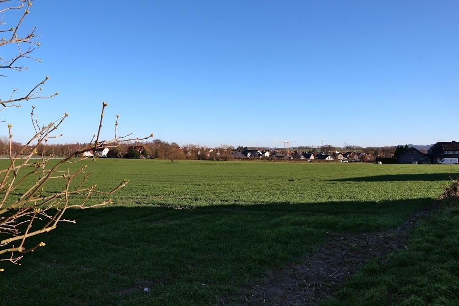 Dieser Acker ist Teil des geplanten Baugebietes Brunsheide-Süd. Um ein Klima- und Energiekonzept für dieses Gebiet und die Ortsteile Leopoldshöhe und Schuckenbaum entbrannte ein Streit. Foto: Thomas Dohna