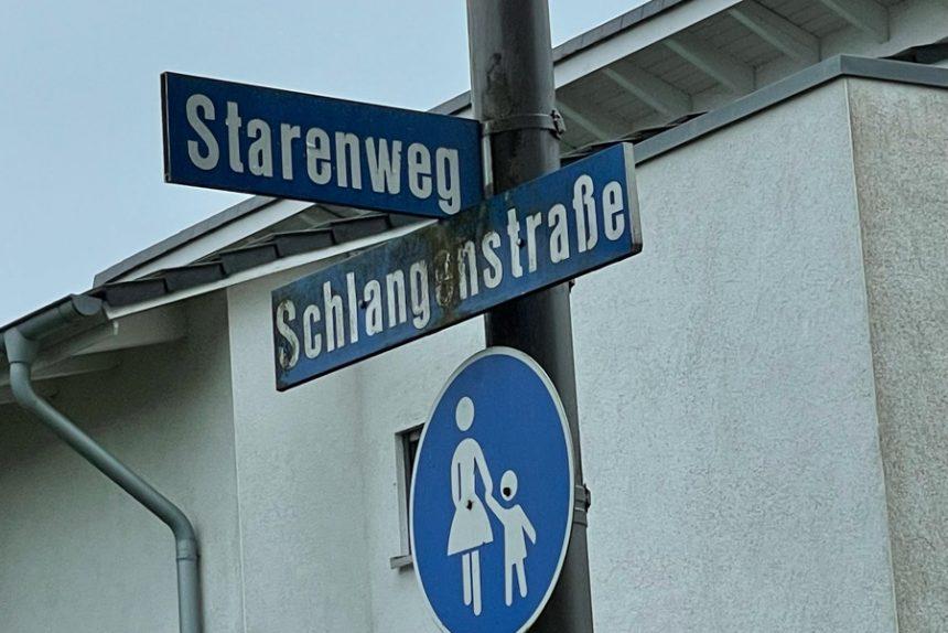 An der Ecke Schlangenstraße / Starenweg liegt das Gelände einer ehemaligen Gärtnerei. Dort sollen Häuser gebaut werden dürfen. Foto: Lisa Windolph