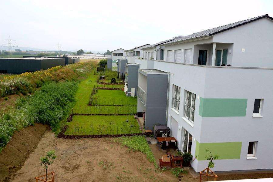 Am Augustenweg hat die Wohnbau Lemgo Mehrfamilienhäuser mit zum Teil öffentlich geförderten Wohnungen gebaut. Die Gartenflächen waren bei der Aufnahme des Fotos noch nicht fertiggestellt. Foto: Thomas Dohna
