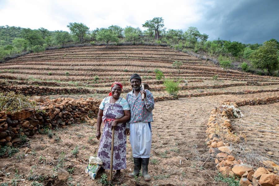 Projektbeispiel Simbabwe: Kleinbauern wie Evelyn und Gift Dirani werden dabei unterstützt, auf ihrem Hof mit den Folgen des Klimawandels zu leben und gleichzeitig die Umwelt zu schützen. Foto: Karin Schermbrucker/Brot für die Welt